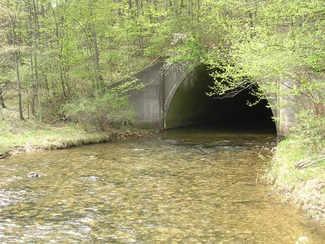 S Fork Beech Creek