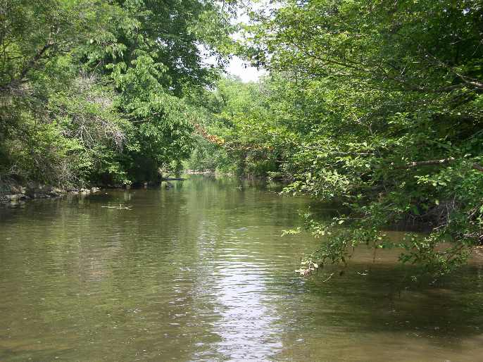 Sinking Creek Ramsey Site